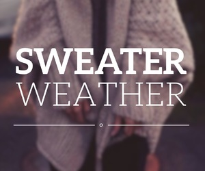 autumn, quote, and sweater image