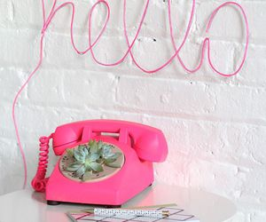 hello, pink, and plants image