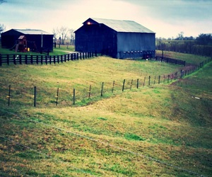 country, kentucky, and rural image