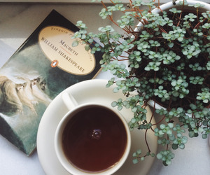 book, plants, and coffee image