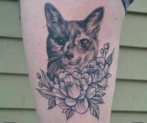 art, cat, and floral image