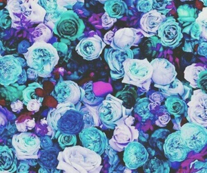 blue, purple, and flowers image