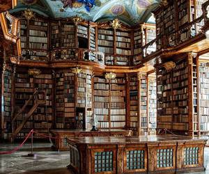 book, library, and biblioteca image