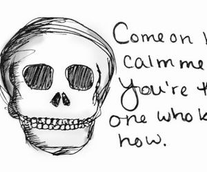 quotes, skull, and the front bottoms image