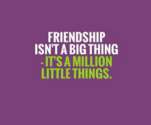 friendship, quote, and little things image