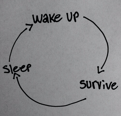 survive, sleep, and wake up image