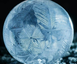 bubble, frozen, and heart image