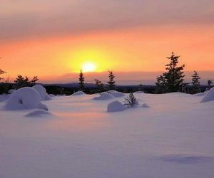 calling, nature, and north of sweden image