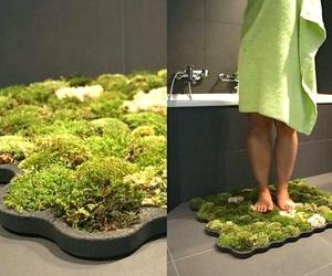 moss, bathroom, and carpet image