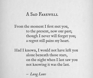 Lang Leav, quotes, and words image