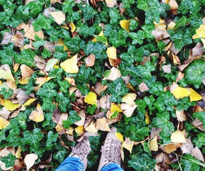 and, boots, and leaves image