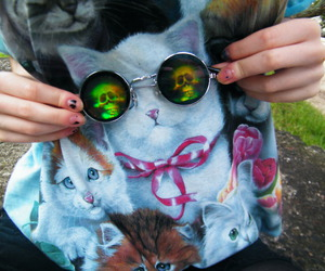 cat, glasses, and grunge image
