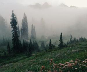 landscape, nature, and sad image