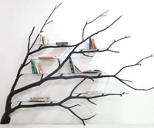 shelving, tree, and beautifully image