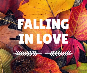 autumn, quote, and fall image