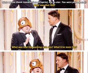 award, bear, and channing tatum image