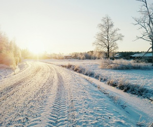 february, finland, and nature image
