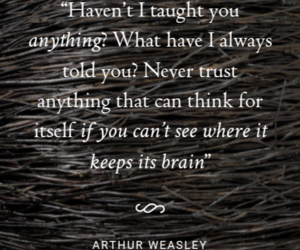 brain, chamber of secrets, and harry potter image