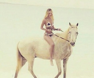 horse, model, and candice image