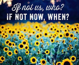 cool, quote, and sunflower image