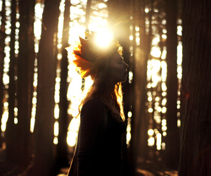 autumn, conceptual, and crown image