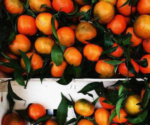 colorful, fruit, and oranges image