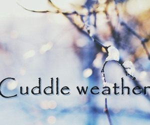 blue, cold, and cuddling image