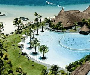 beach, sea, and palm trees image