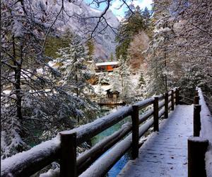 snow, nature, and switzerland image