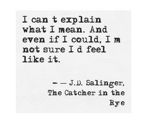 catcher in the rye, holden caulfield, and literature image