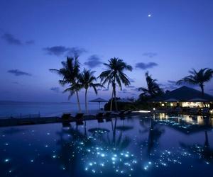 night, paradise, and blue image