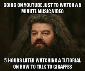 funny, youtube, and hagrid image
