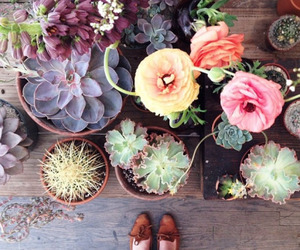 flowers, plants, and indie image