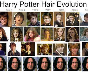 hair, harry potter, and hair evolution image
