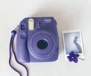 purple, flowers, and camera image