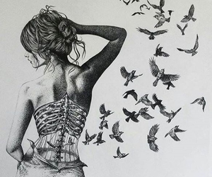 art, bird cage, and birds image