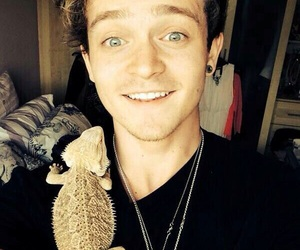 connor ball, the vamps, and REX image