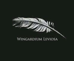 harry potter, wingardium leviosa, and magic image