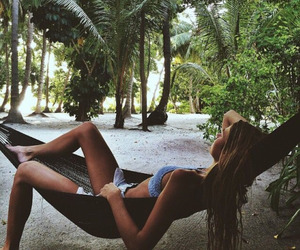 beach, hammock, and rainforest image