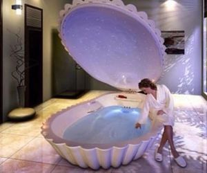 luxury, shell, and water image