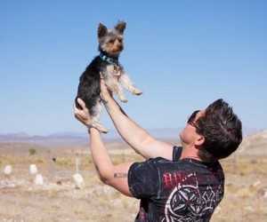 yorkie, love, and ghost adventures image