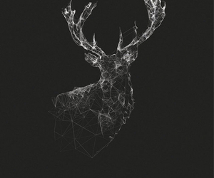 wallpaper, deer, and black image