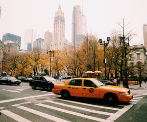 adventure, nyc, and travel image