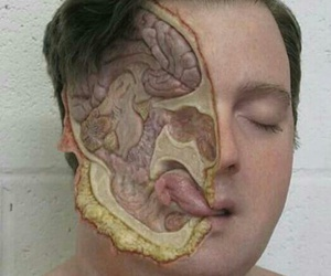 anatomy, brain, and face image