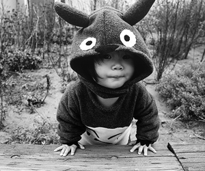 cute, baby, and totoro image