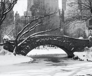 winter, bridge, and black and white image