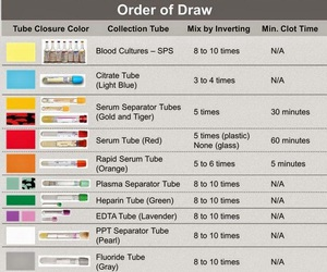 phlebotomy and order of draw image