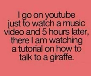 youtube, funny, and giraffe image