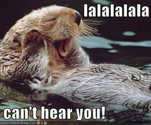 adorable, beaver, and caption image