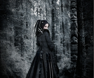 gothic, obscure, and trees image